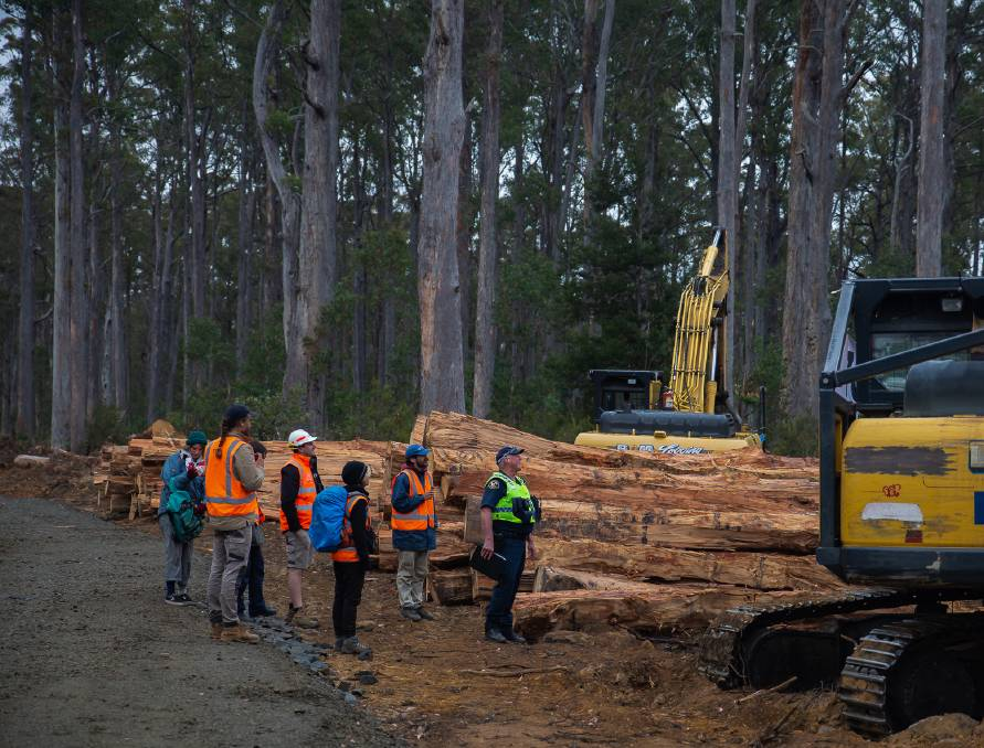 Protesters from the Bob Brown Foundation halt logging activity in the Wentworth Hills, a renewal of their action in the area after eight days of protest several weeks ago.