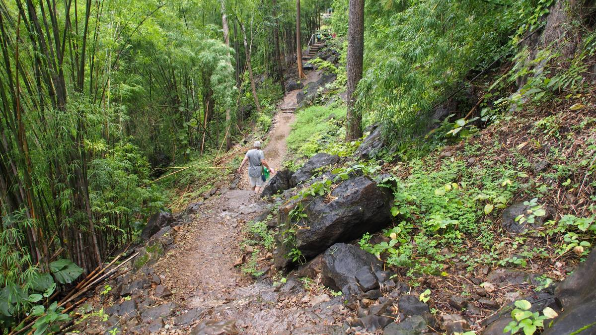NOW SERENE: The track down to Hellfire Pass has been reclaimed from the jungle.